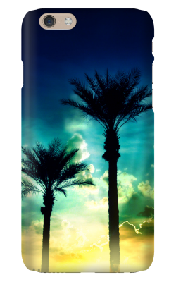 IP6-CS_Palms