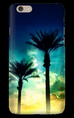 IP6-CS_Palms