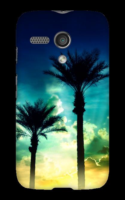 MOTOG-CS_Palms